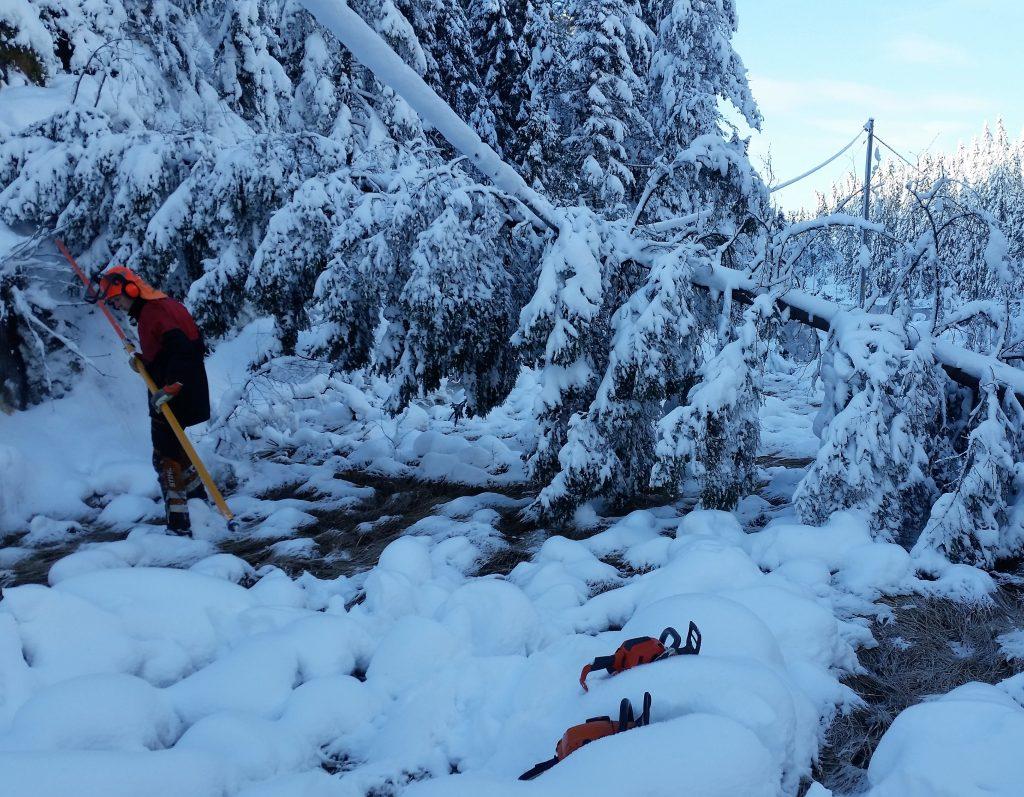 Strømstans pga tung snø